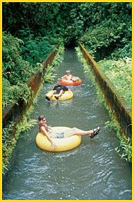 Kauai Backcounty Adventures - Kauai Tubing